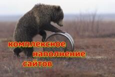 Наполнение сайта контентом (5 статей) 18 - kwork.ru