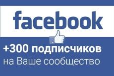Добавлю 2000 вечных подписчиков на паблик в Facebook 13 - kwork.ru