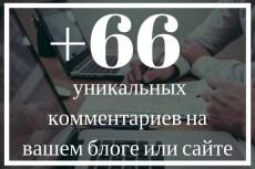 1 осмысленный и грамотный комментарий на ваш сайт 22 - kwork.ru