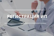 Заявление на регистрацию ИП и открытие рас. счета в тинькофф в подарок 8 - kwork.ru