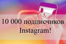 Настрою рекламу в Яндекс. Директ 5 - kwork.ru