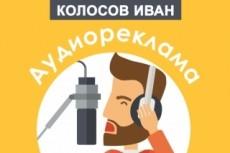 Озвучу новостную ленту, шоу-программу 14 - kwork.ru