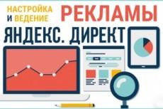 Настройка контекстной рекламы Яндекс.Директ  [50 объявлений] + Бидер + Ведение 23 - kwork.ru