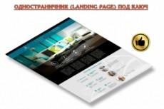 Одностраничный сайт на Wordpress под ключ 4 - kwork.ru