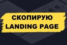 Скопировать лендинг, одностраничный сайт 43 - kwork.ru