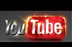 Скачаю 10 видео из YouTube 21 - kwork.ru
