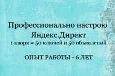 Яндекс Директ. Полноценная кампания (500 ключевых запросов) + РСЯ + бонус 36 - kwork.ru