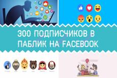 Добавлю 2000 вечных подписчиков на паблик в Facebook 10 - kwork.ru