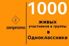 1000 +100 живых участников в группу Одноклассники 12 - kwork.ru
