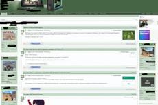 Установлю или перенесу Ваш сайт на хостинг или сервер 17 - kwork.ru