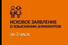 Дам консультацию как взыскать долг 17 - kwork.ru