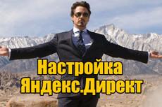 Профессиональная настройка Яндекс. Директ + РСЯ в подарок 2 - kwork.ru