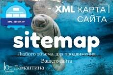 Создам и размещу xml карту сайта до 500 страниц 9 - kwork.ru