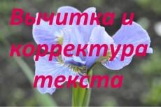 Корректура и вычитка текстов любой сложности 8 - kwork.ru