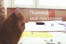 Выполняю письменные переводы (англ-рус, рус-англ) 20 - kwork.ru