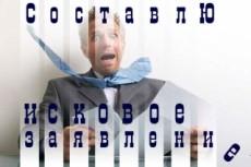 Юридическая консультация по гражданским делам, исковые заявления 11 - kwork.ru