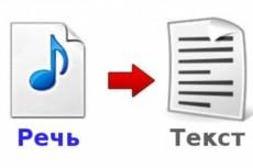 Расшифровка аудио видеозаписей, опыт работы 2 года, конфиденциально 9 - kwork.ru