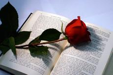 Напишу вам стихотворение или текст для песни  на любую тему 5 - kwork.ru