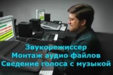 Редактирование и коррекция аудио 7 - kwork.ru