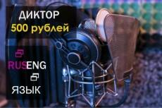 Диктор, актер у микрофона 11 - kwork.ru