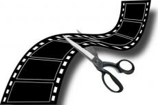 Монтаж, нарезка, склейка, наложение звука на видео 12 - kwork.ru