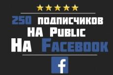 200 подписчиков с фильтрами в паблик Facebook. Не группа. Гарантия 13 - kwork.ru