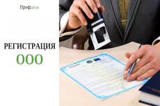 Документы на внесение изменений в ООО, ИП 20 - kwork.ru