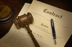 Составлю юридический документ 5 - kwork.ru