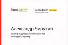 проверю настройки Яндекс Директ 3 - kwork.ru