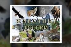 Сделаю из шаблона АЕ 10 - kwork.ru