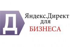 Настрою Яндекс. Директ. Аудит рекламных кампаний. Настройка Analytics 5 - kwork.ru
