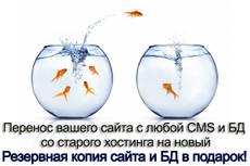 Перенесу ваш сайт на другой хостинг 13 - kwork.ru