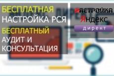 Аудит Вашего Я. Директ и сайта по 175 пунктам пригодности 25 - kwork.ru