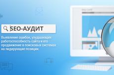 Профессиональный SEO аудит вашего сайта 3 - kwork.ru