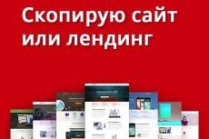 Скопировать лендинг, одностраничный сайт 53 - kwork.ru