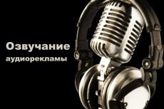 Изготовление аудиоролика 37 - kwork.ru