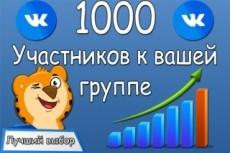 Раскрутка группы Вконтакте - плюс 600 живых подписчиков, продвижение 9 - kwork.ru