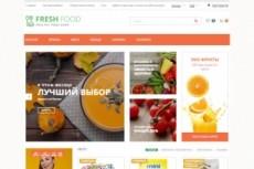 Создам сеть из трех интернет-магазинов 11 - kwork.ru