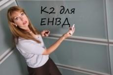 Декларация по ЕНВД для ИП 21 - kwork.ru