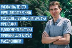 Записываю озвучки, аудиорекламу, аудиокниги и мн.др. Муж. и жен. голоса 4 - kwork.ru