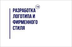 Логотип, фирменный стиль. Визитка в подарок 25 - kwork.ru