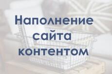 Ручное наполнение интернет-магазина товаром, контентом 15 - kwork.ru