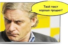 Напишу статью для блога интернет магазина, рекламную статью и т.д. 3 - kwork.ru