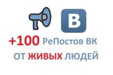 70 Соц. сигналов с различных сетей G+, FB, TW, VK 4 - kwork.ru