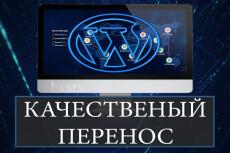 Перенос сайта WordPress на новый хостинг, VPS 4 - kwork.ru