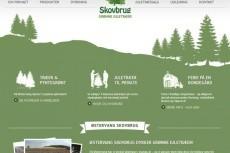 Прототип 1 страницы сайта, магазина 21 - kwork.ru