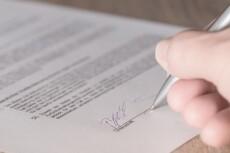 Первичная оценка документов по судебному делу, составление иска 29 - kwork.ru