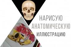 Нарисую персонажа 51 - kwork.ru