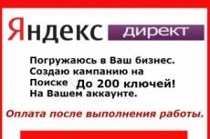 Выгрузка ключевых фраз и текстов объявлений конкурента в Я.Директе 7 - kwork.ru