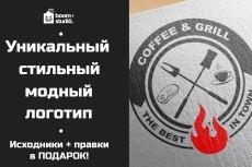Сделаю стильный логотип 4 - kwork.ru
